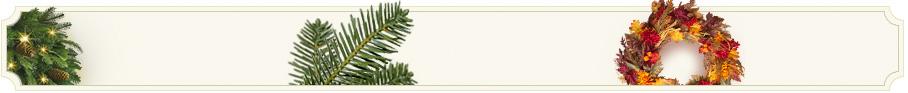 BH Nordmann Fir Artificial Christmas Tree | Balsam Hill