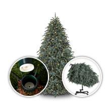 Flip Tree™