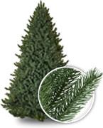 True Needle™ Artificial Trees